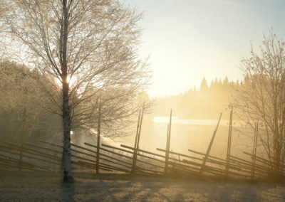 aamu-usva / morning mist at the Kumpunen farm
