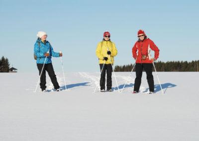 lumikenkäilyä / snowshoe activity