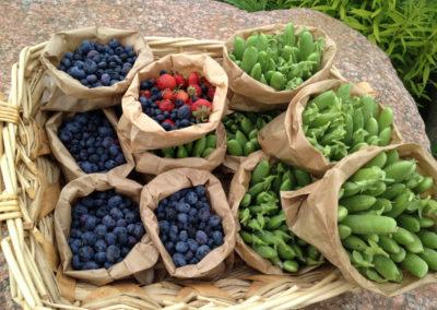 marjat / fresh berries