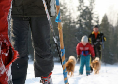 Talvella hiihtämään / Some cross-country activity